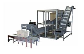 HMWPE Conveyors